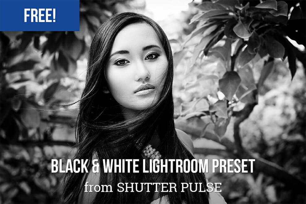 Presets la Lr: Negrita preestablecido de sala de luz libre blanco y negro