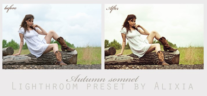 Presets la Lr: Autumn Somnet Lightroom Preset