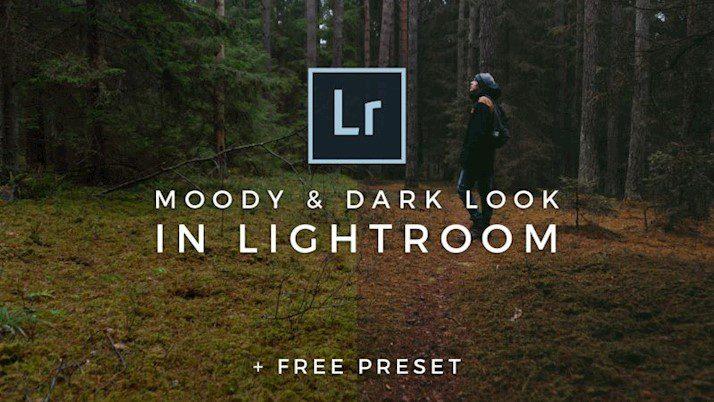 Preset Moody Darkroom Preset