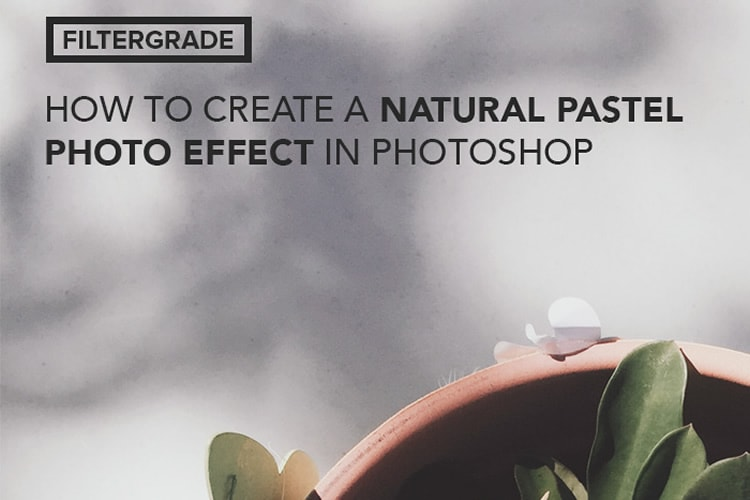 Mejores tutoriales de adobe photoshop: Cómo crear un efecto de foto pastel natural en Photoshop