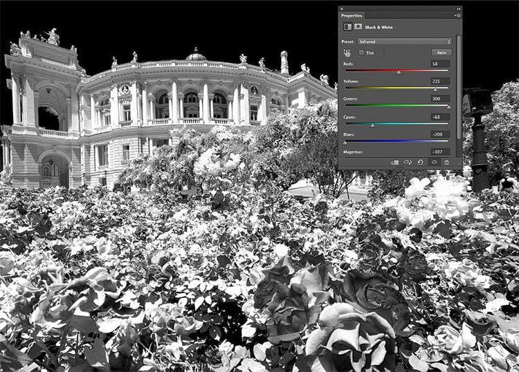 Simule fácilmente el efecto infrarrojo en Photoshop en 7 pasos rápidos