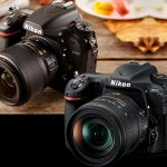 Nikon D500 vs Nikon D750 que cámara debería comprar