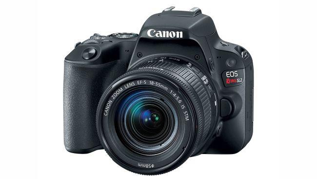 Cámaras profesionales económicas en 2020: Canon EOS 200D