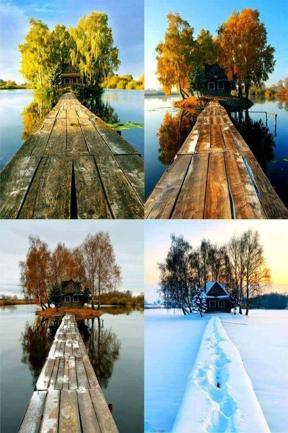 serie de fotos