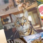 100 presets de lightroom gratis para descargar y mejorar tu fotografía