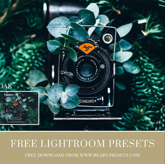 Mejores Presets para lightroom gratis 2020
