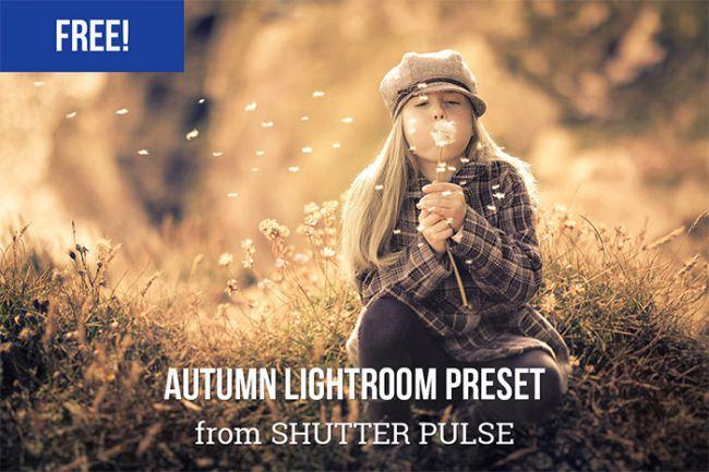 65 Mejores presets gratuitos de Lightroom: preajustes de pulso de obturador