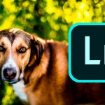 10 errores comunes al editar con Lightroom