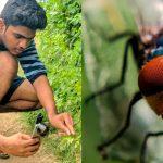 Fotógrafo de India toma impresionantes fotos macro con su teléfono