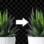 ¿Cómo hacer que la herramienta 'Selección de objetos' de Photoshop sea más precisa?