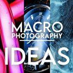 10 ideas fáciles de fotografía macro para probar en casa