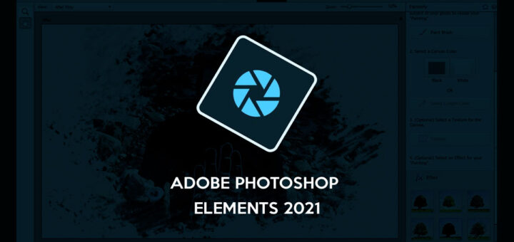 Qué es Adobe Elements 2021